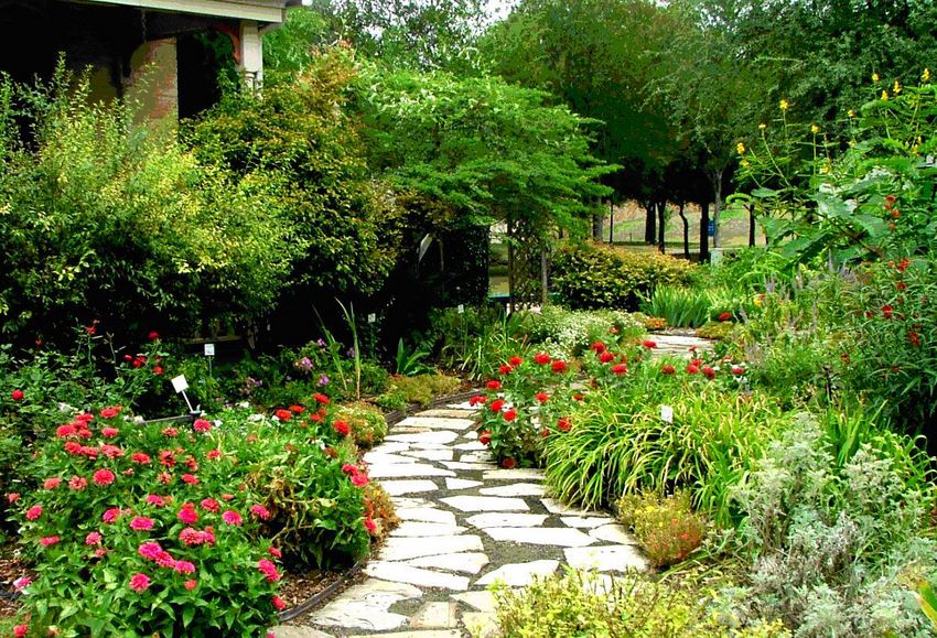 Landscaping Basics for Starting up a Yard from Scratch