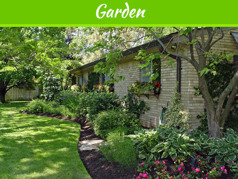 Wild Backyard Garden :  Wild Enough Preventing Unwelcomed Visitors to Your Home, Yard and