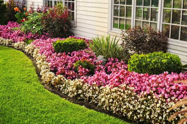 5 Ways to Beautify your Yard this Summer