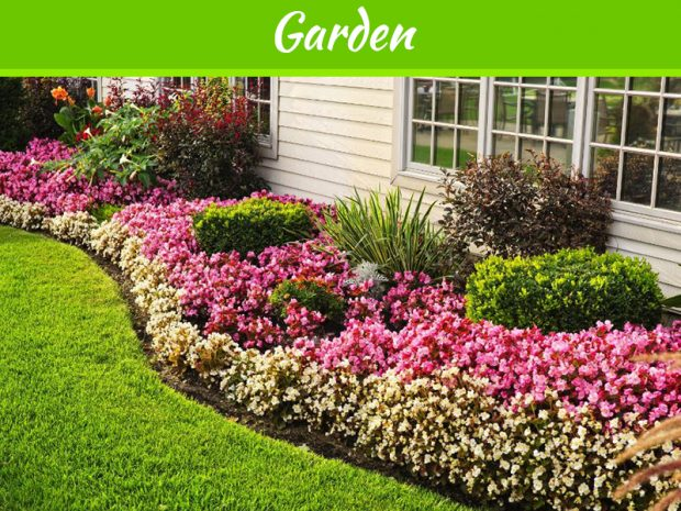 5-ways-to-beautify-your-yard-this-summer