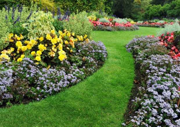 Beautify Your Landscape