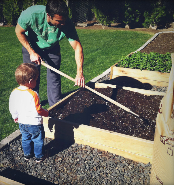 Build The Soil