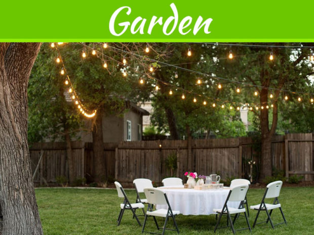 decorating-tips-to-make-your-nest-backyard-bash-unforgettable