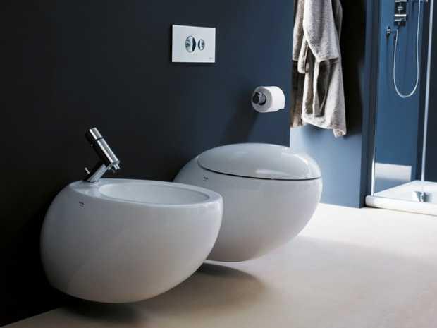Luxury Bidet Toilet