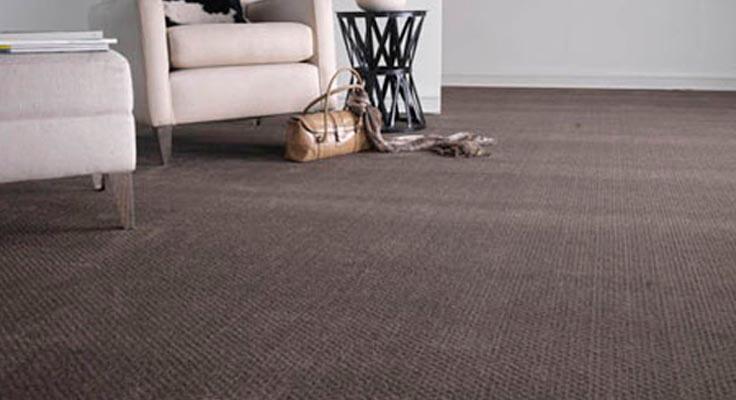 How To Choose Carpet Color Carpet The Honoroak