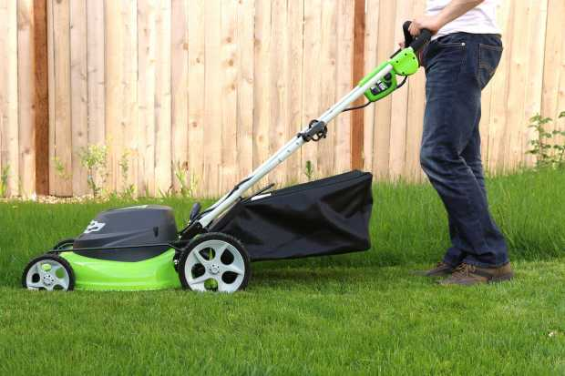 Hire company for Lawn care
