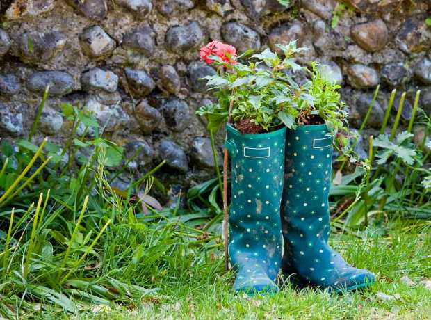 Rainboot Garden