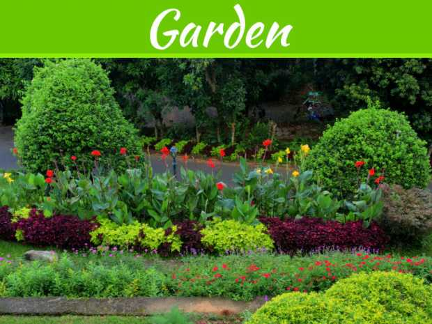 5 Ways To Update The Garden In A New Home