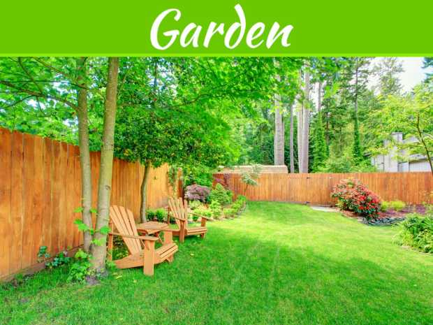 Tips For The Best Maintenance Of Timber Fencing For Years