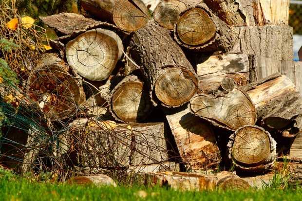 Choose the Best Log Splitter
