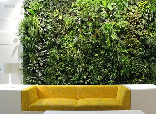 Interior Wall Garden