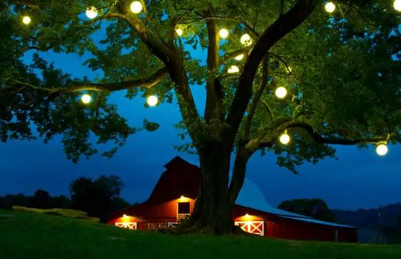 LED Glowing Orbs