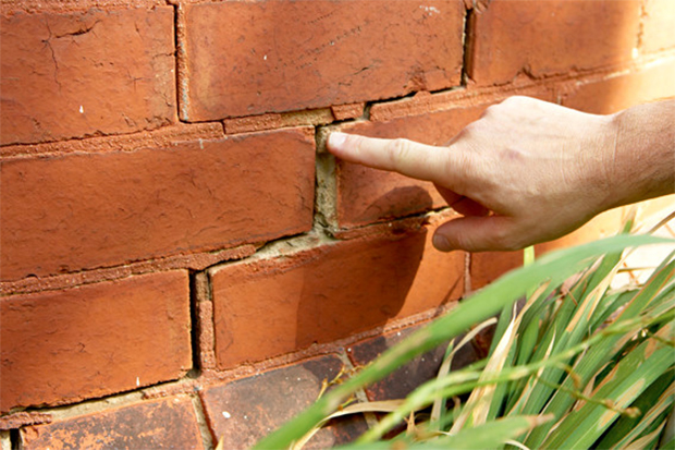 Know The Signs Of Termite Damage In Your Home My Decorative