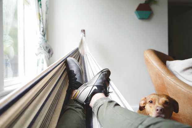 Arrange A Reading Zone