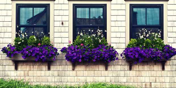 Heightened Curb Appeal