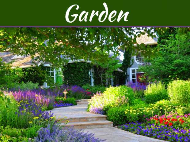 How To Create An Amazing Garden That's Full Of Colour