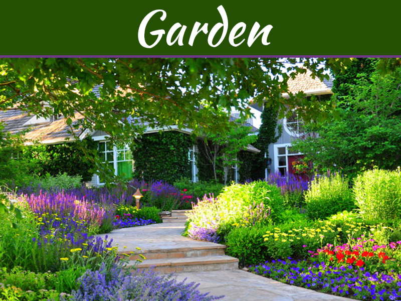 How To Create An Amazing Garden That S Full Of Colour My Decorative
