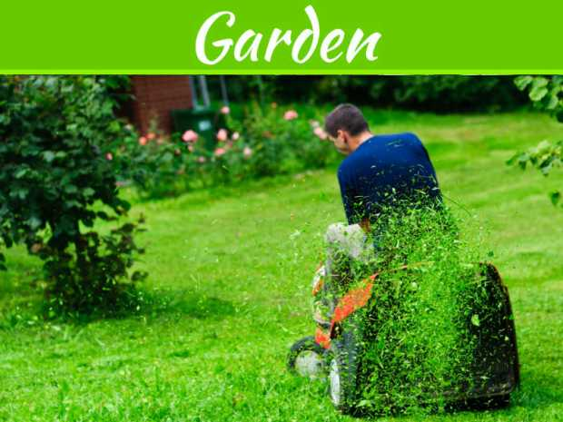 Save Time By Picking The Best Lawn Tractor For Your Garden