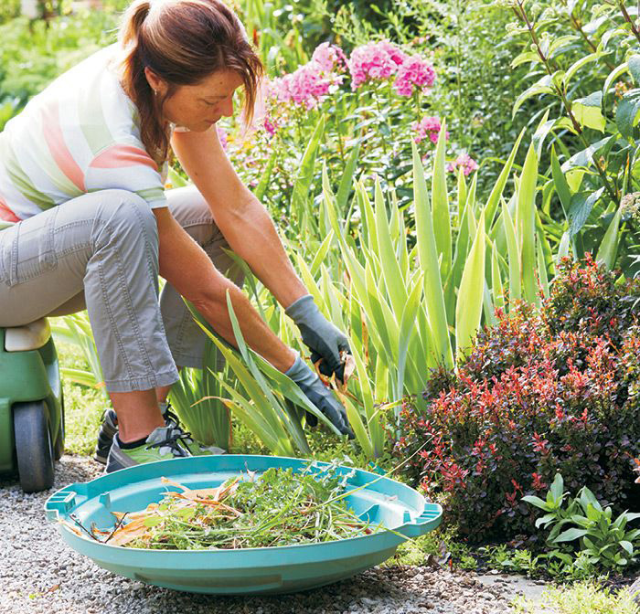 Weed And Deadhead Your Gardens