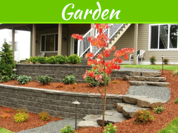 What Are Hardscaping And Softscaping When It Comes To Landscape Designing?