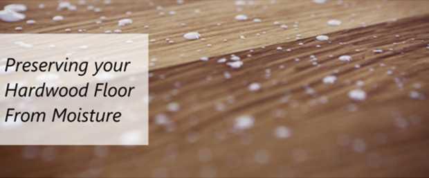 Preserving Your Hardwood Floor From Moisture
