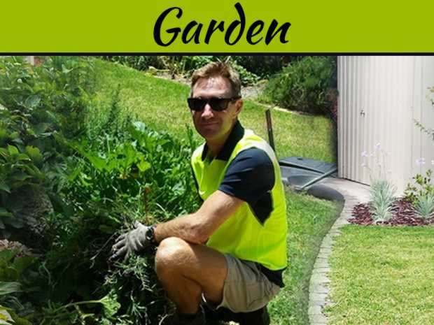 Professional Gardening Services – Keeping The Garden Well Arranged