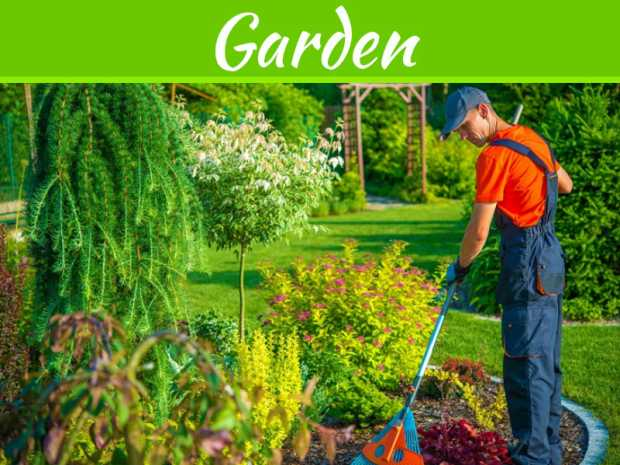 5 Tips To Keep Your Garden Looking Healthy All Year Round