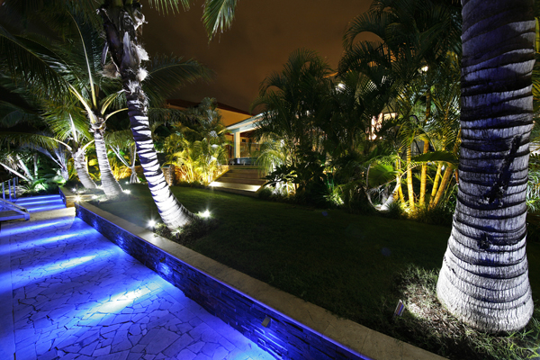 Garden LED Light