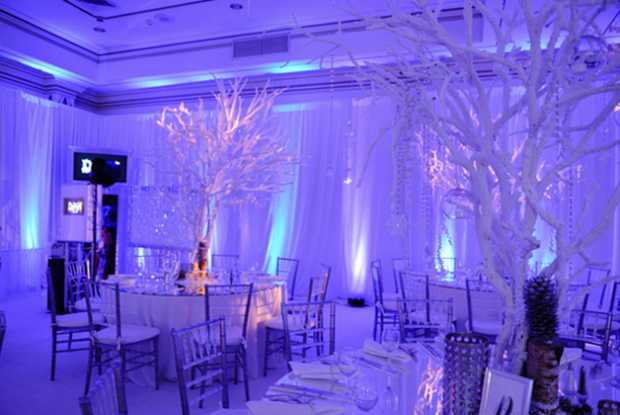 Fire and Ice Theme Decoration