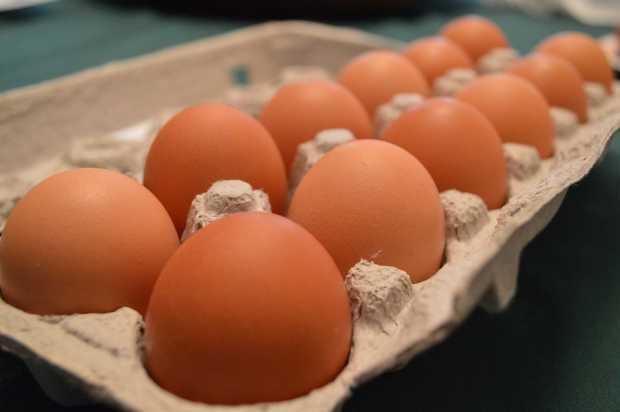 Egg Carton Photo