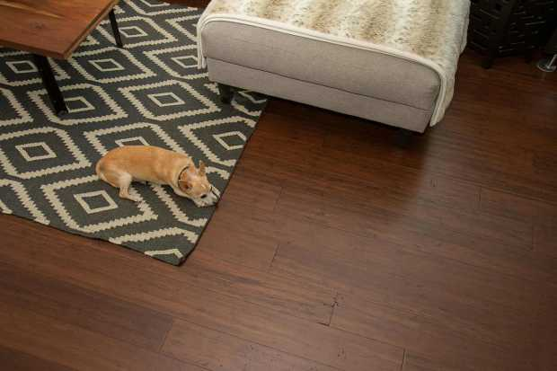 Hardwood Flooring Damage