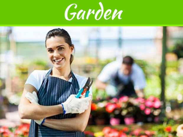 How to Start Your Own Gardening Business the Expert Way