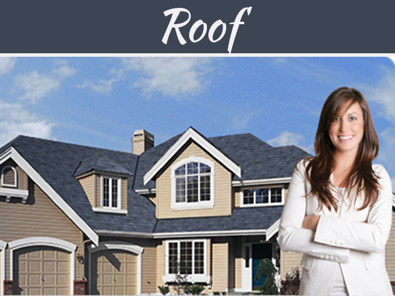 Rotten Roof - A Short Guide to Renovating an Older Home