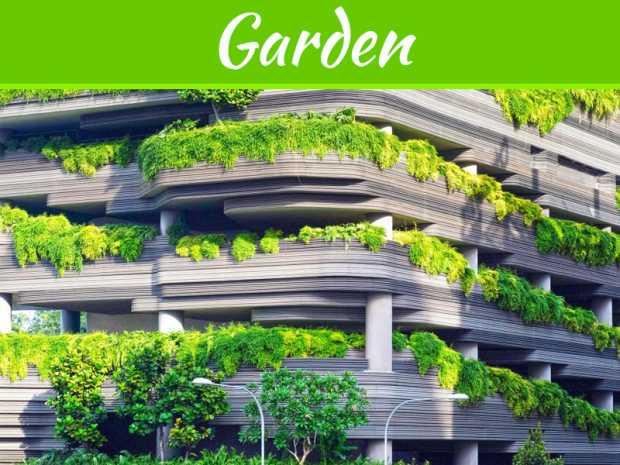Rooftop Gardens - Amazing Benefits And Tips To Create One