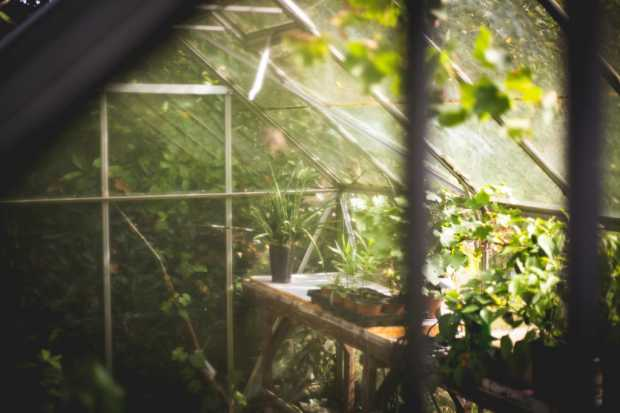 Soil And Fertilizers For Gardening