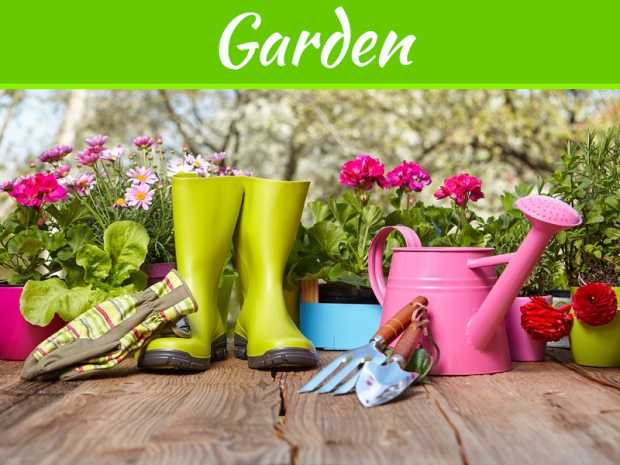 Tools That A Professional Gardener Will Require