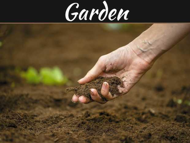 Free Non-toxic & Effective Soil Amendments from Rubbish Removal