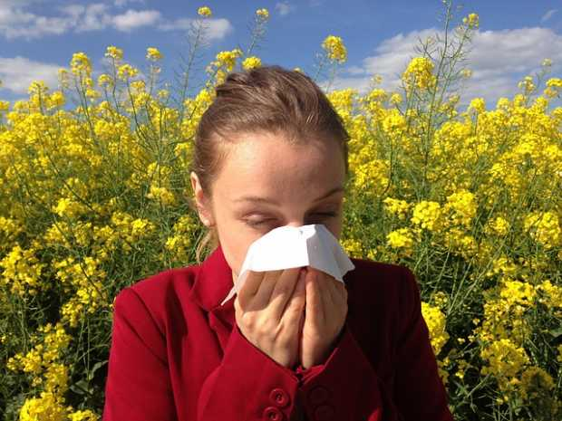 Allergy Medical Allergic