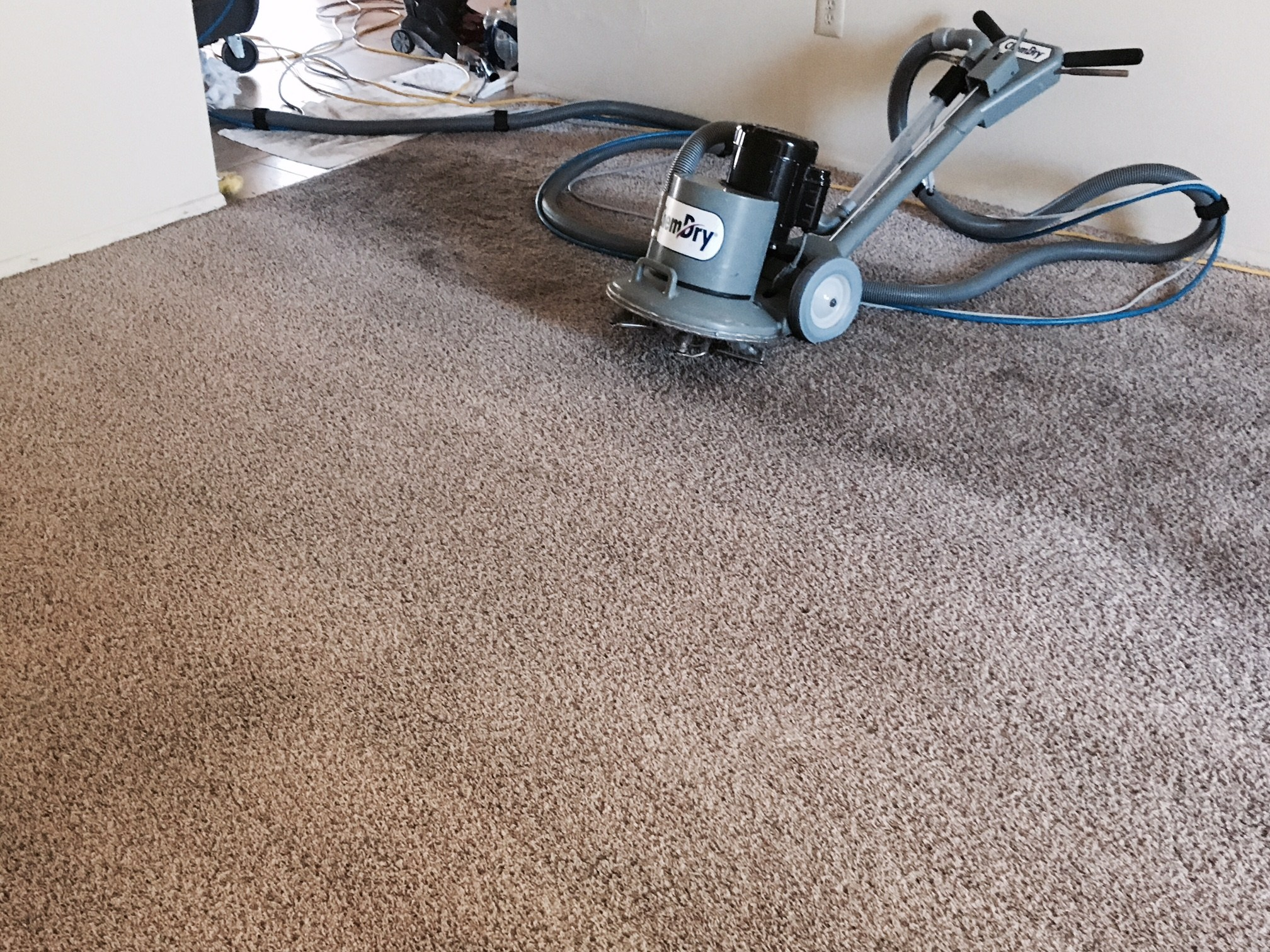 5 Tips To Finding Orange County Carpet Cleaning Professionals | My Decorative