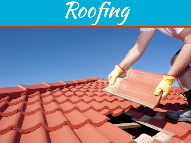 Shingle vs Tile Roof - Best Option For You