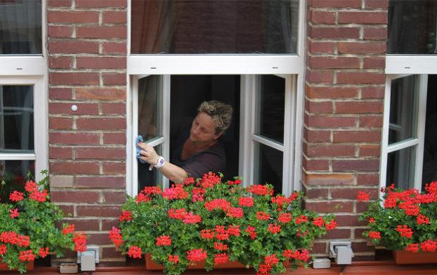 Wash Your Windows