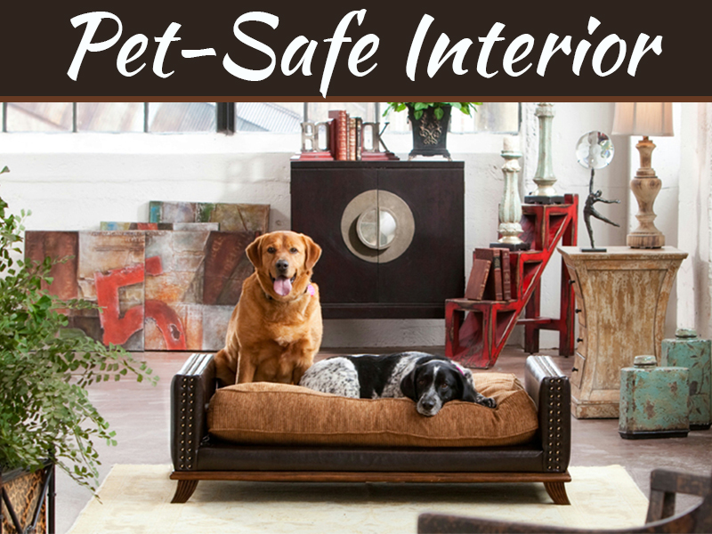 Home Interior Design Tips For Making Your Home Pet-Safe