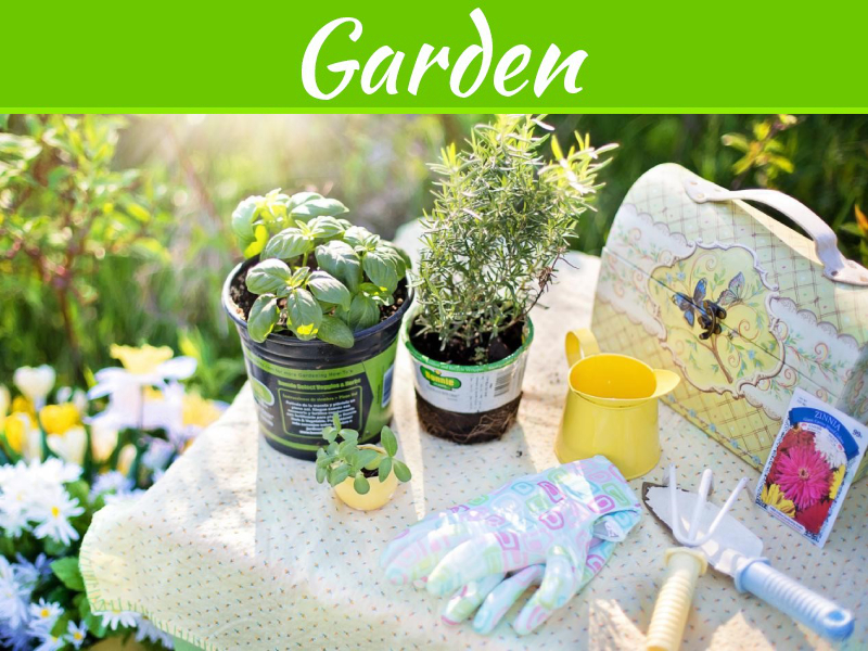 How To Prepare The Soil For Gardening