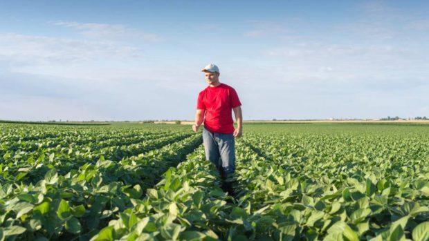 Precision Agriculture Advantages