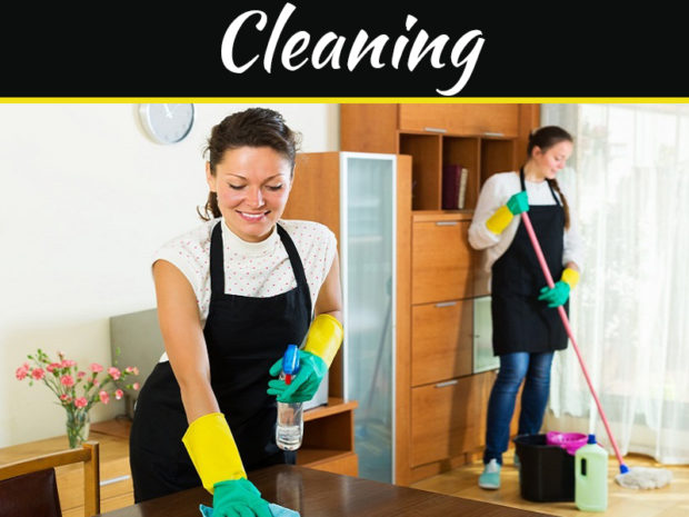 What Services You Can Expect From Professional Cleaners?