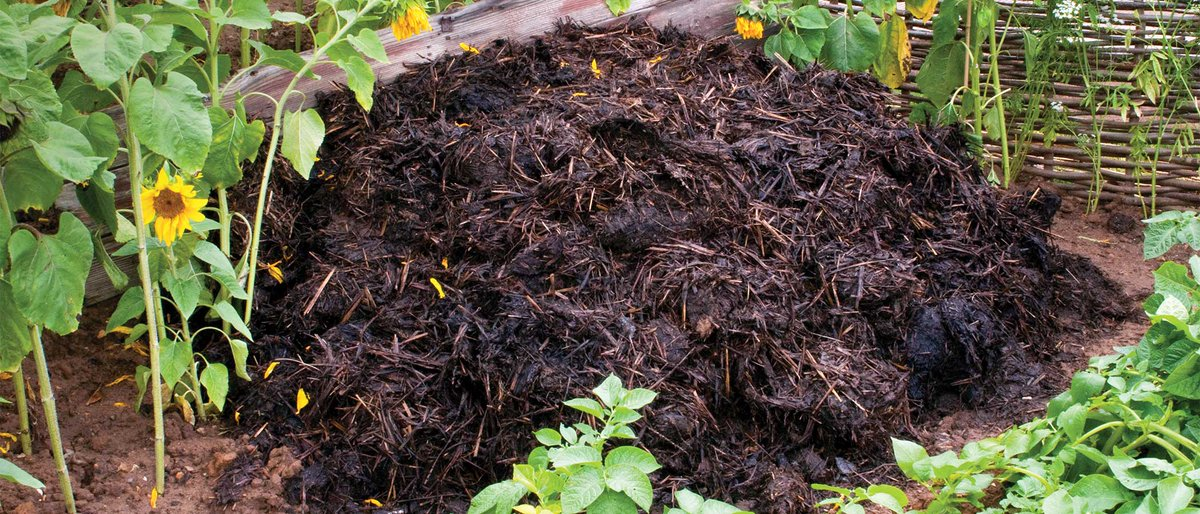 Seaweed Compost