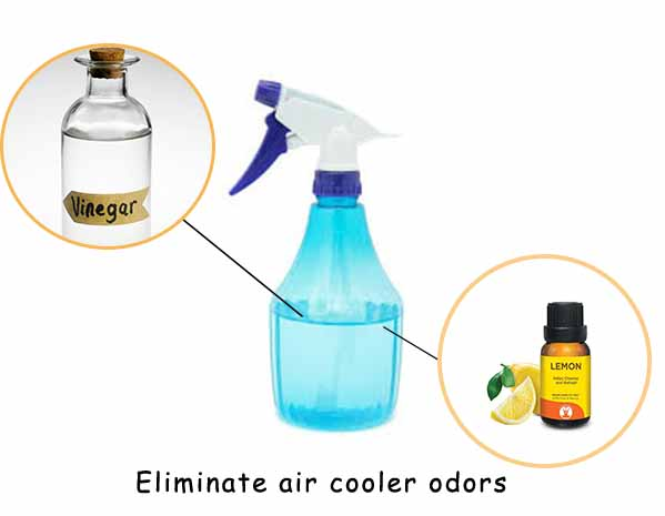 Cooler Cleaning