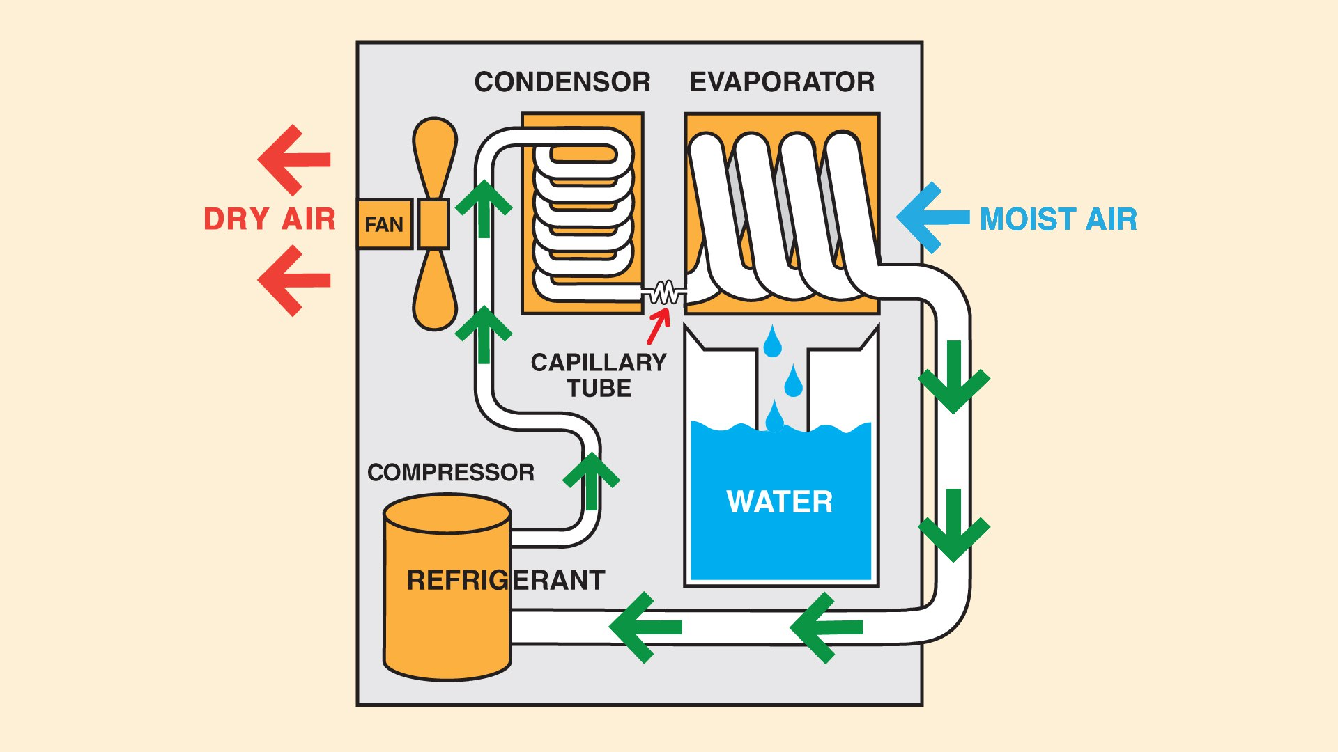 How Dehumidifier Works