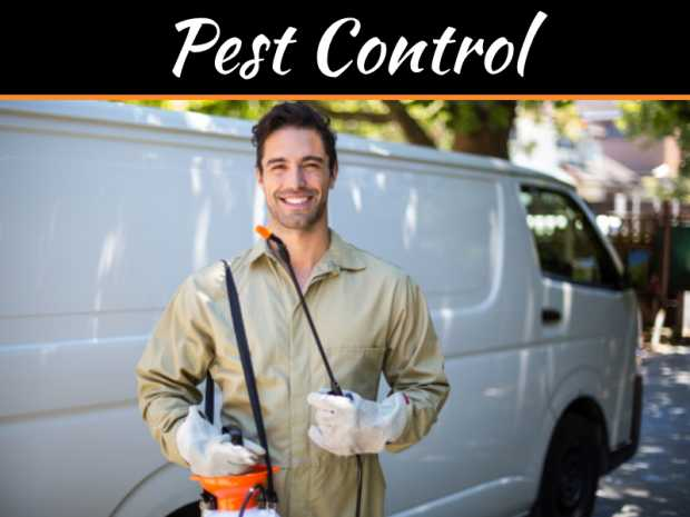 Retaining Reputation - How Commercial Pest Control Can Reduce Risk To Your Business