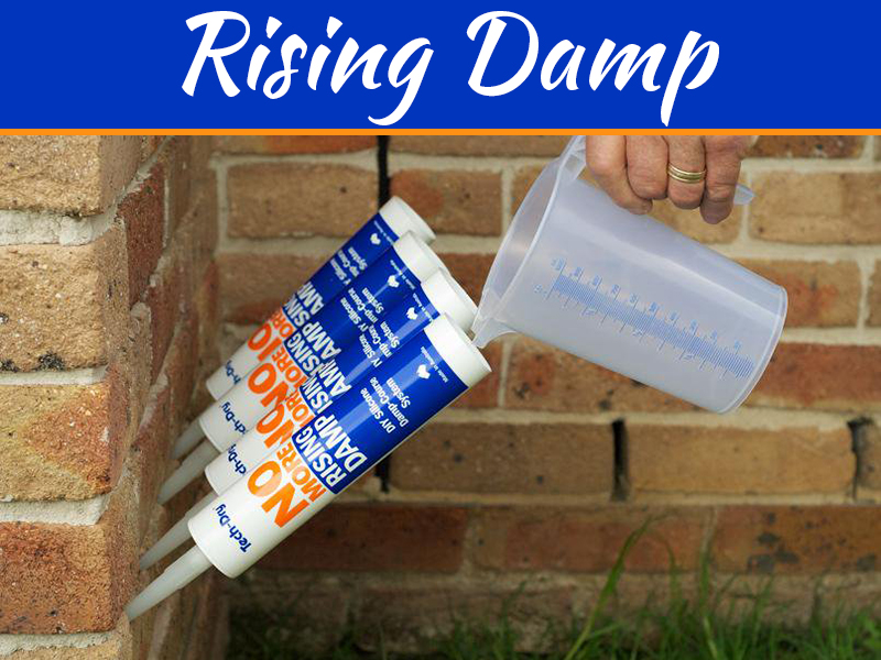 Rising Damp Could Be Secretly Ruining Your Home - Here's How